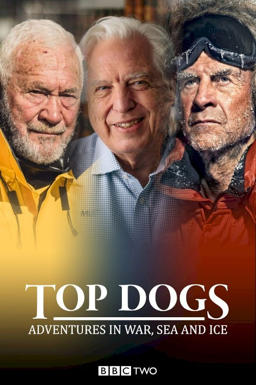 Top Dogs: Adventures in War, Sea and Ice