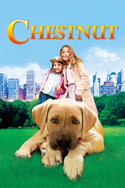 Chestnut: Hero of Central Park - Movie Poster