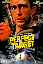 Perfect Target - Movie Poster