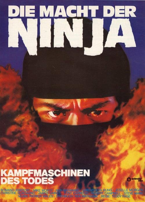 Ninja's Force - Movie Poster