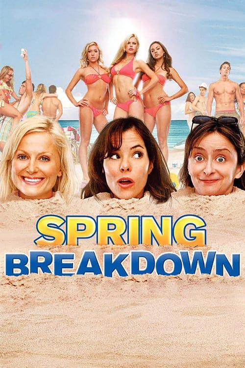 Spring Breakdown - Movie Poster