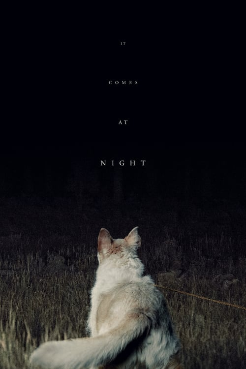 It Comes at Night - Movie Poster