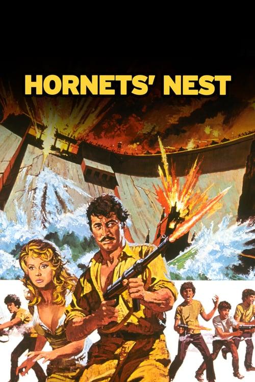 Hornet's Nest - Movie Poster
