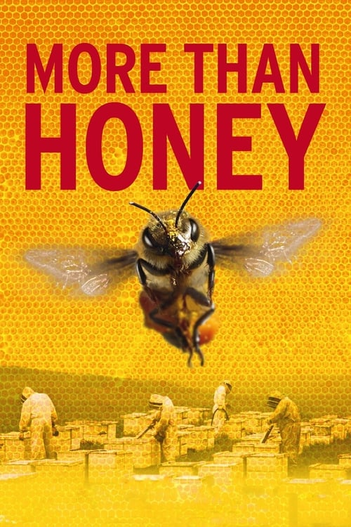 More Than Honey - Movie Poster