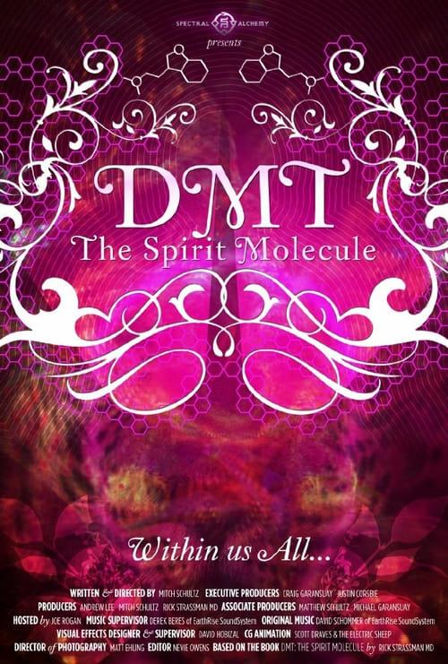 DMT: The Spirit Molecule - Movie Poster