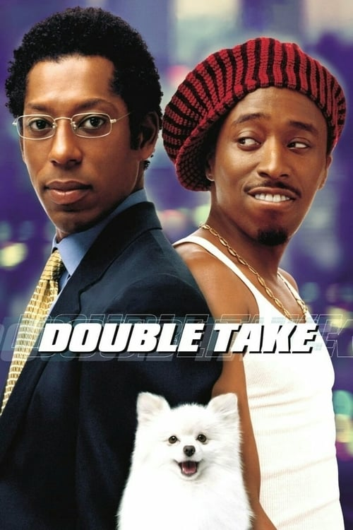Double Take - Movie Poster