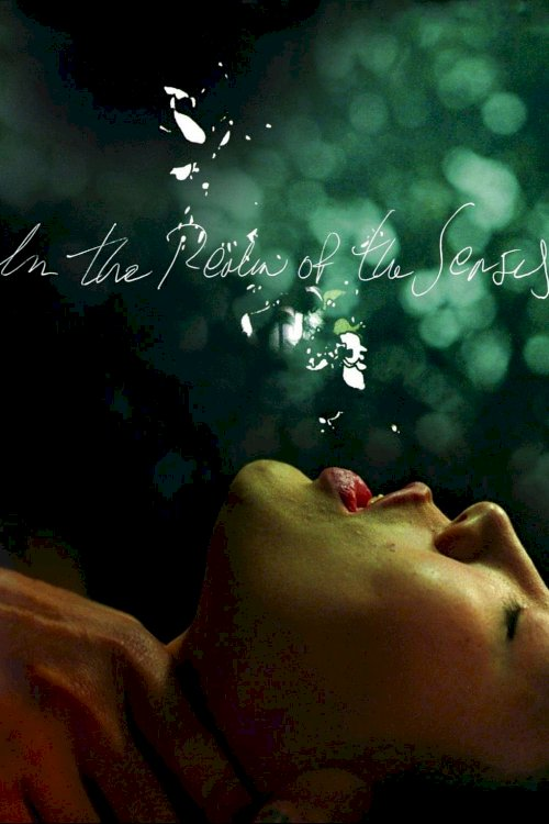 In the Realm of the Senses - Movie Poster