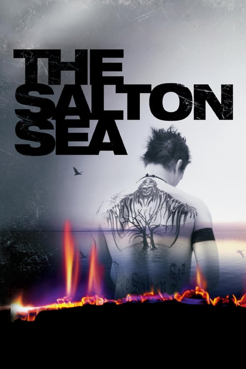 The Salton Sea - Movie Poster