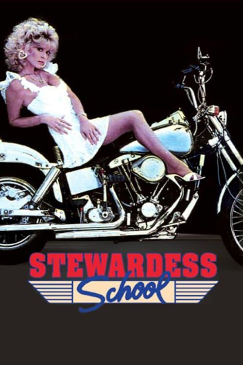Stewardess School - Movie Poster