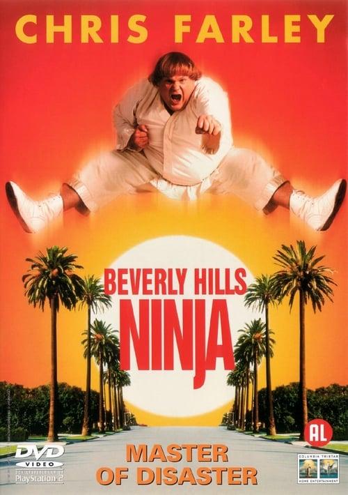 Beverly Hills Ninja - Movie Poster