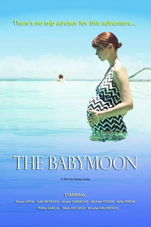 The Babymoon - Movie Poster
