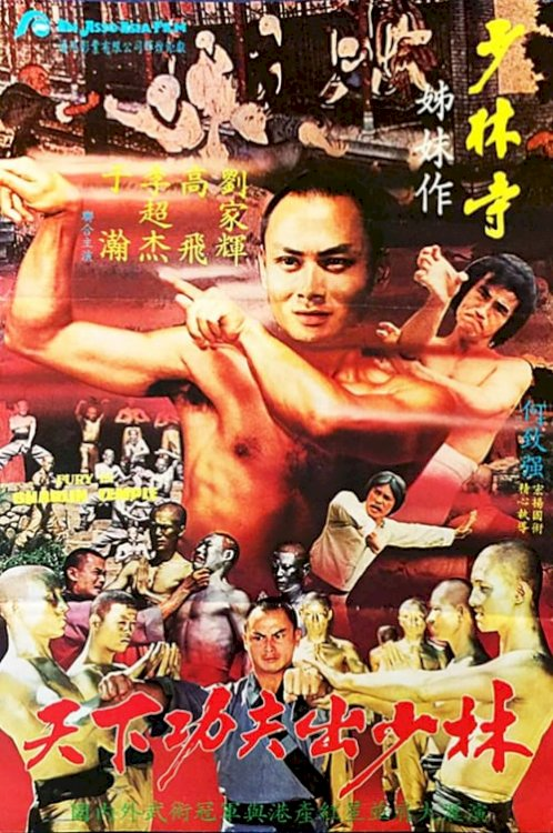 Fury in the Shaolin Temple - Movie Poster