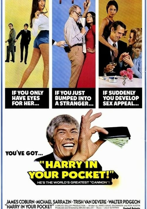 Harry in Your Pocket - Movie Poster