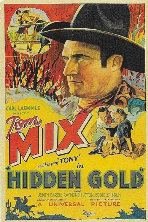 Hidden Gold - Movie Poster