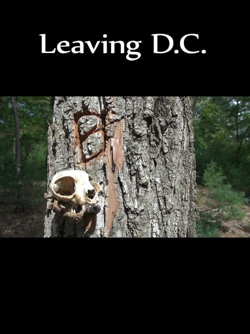 Leaving D.C. - Movie Poster