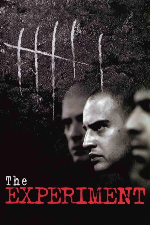 The Experiment - Movie Poster