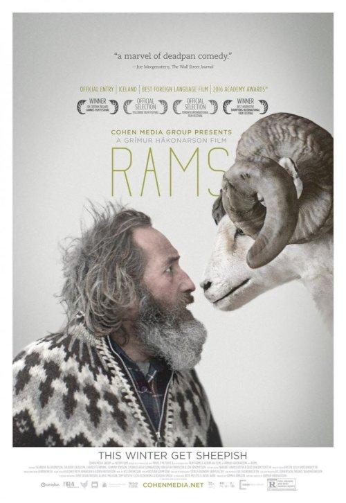 Rams - Movie Poster