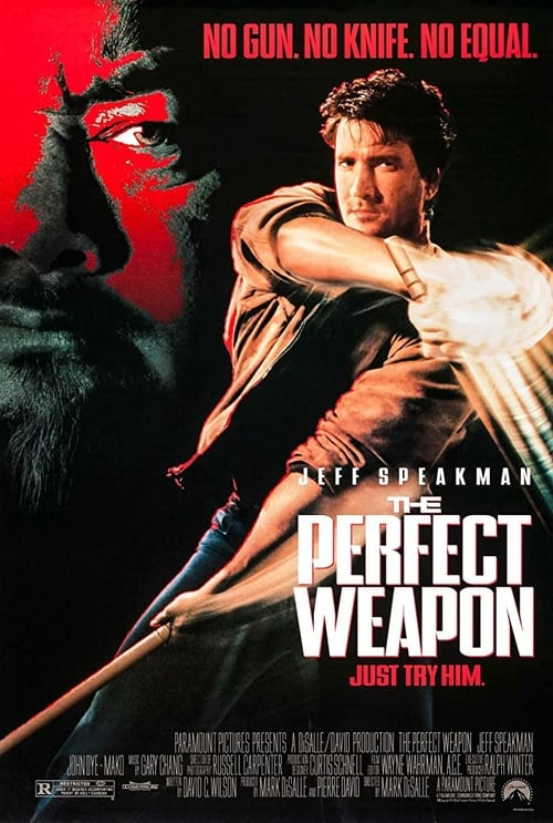 The Perfect Weapon - Movie Poster