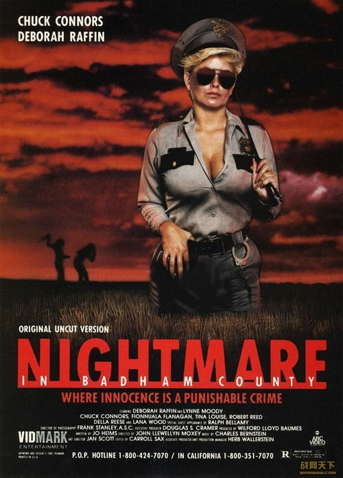 Nightmare in Badham County - Movie Poster