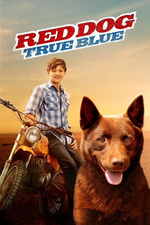 Red Dog: True Blue - Movie Poster