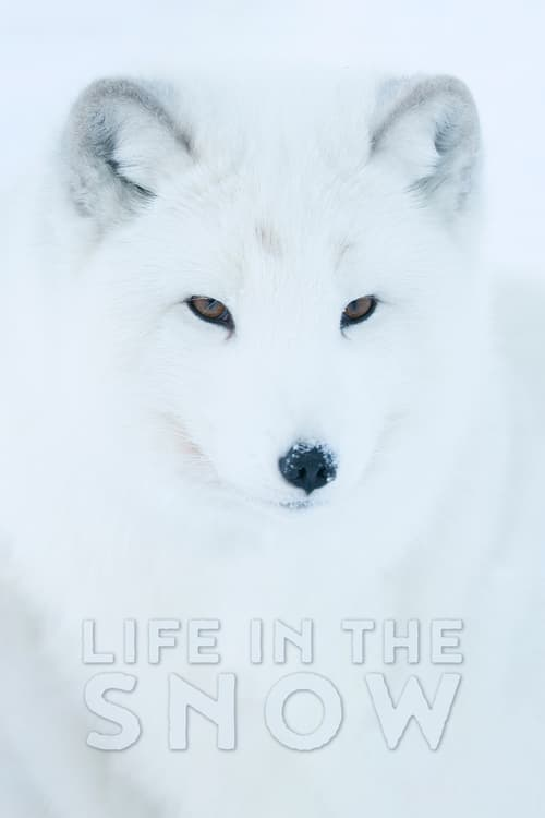 Life In The Snow - Movie Poster