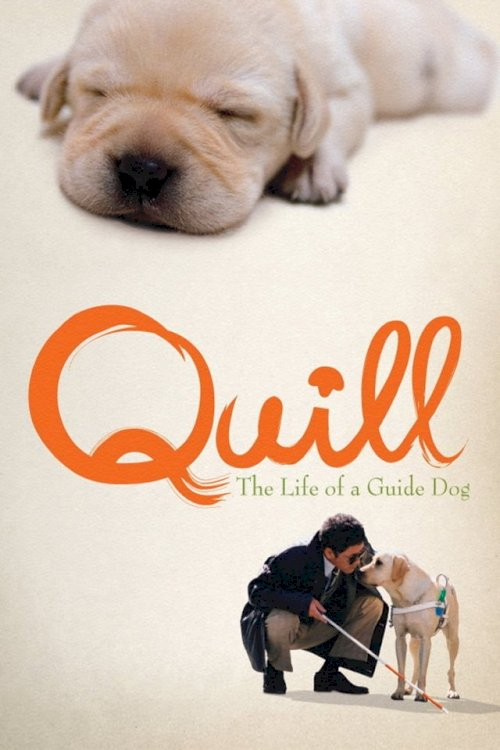 Quill:  The Life of a Guide Dog - Movie Poster