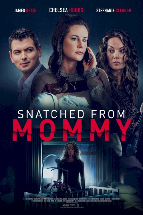 Snatched from Mommy - Movie Poster
