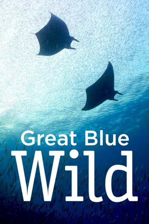 Great Blue Wild