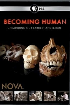 Becoming Human: First Steps