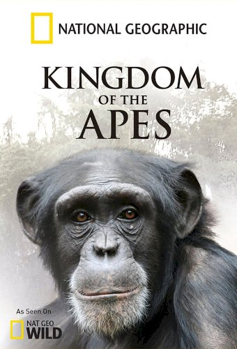 Kingdom of the Apes