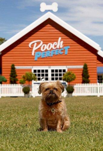 Rebel Wilson's Pooch Perfect